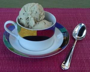 Mint Chip Frozen Dessert
